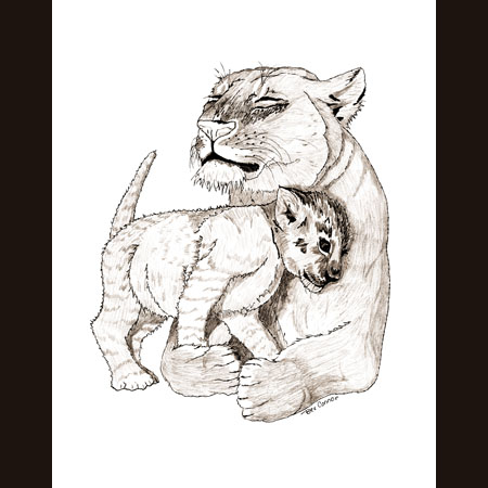 drawing of Lion with Cub