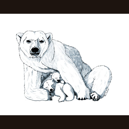 drawing of Polar Bear with Cubs